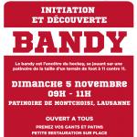 Initiation et découverte du bandy